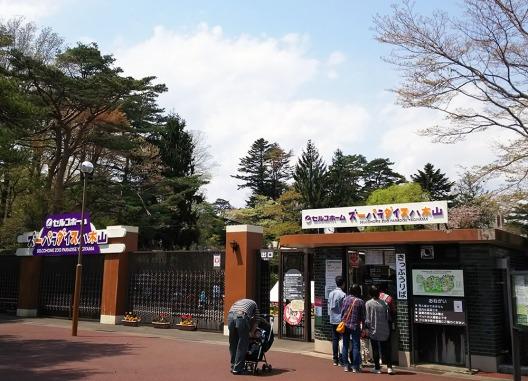 zoo入口