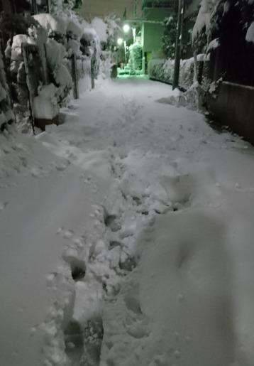 before(1/22深夜)
